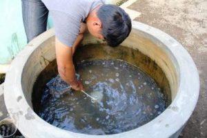 cara membuat kolam lele dari buis beton